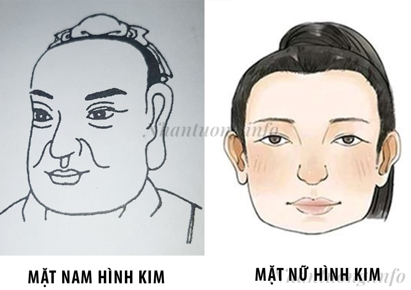 Cách nhận diện tướng mặt ngũ hành Kim