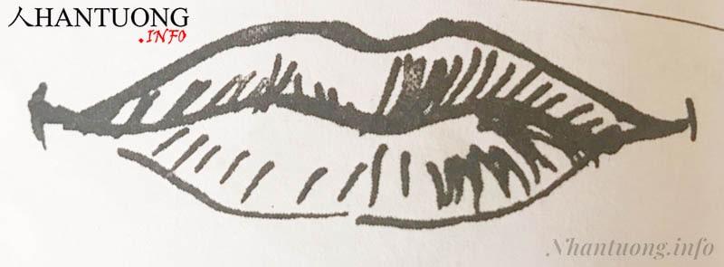 Miệng khỉ