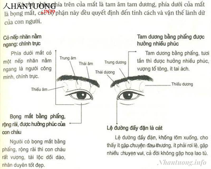 Phán đoán lành dữ qua các bộ phận quanh của mắt
