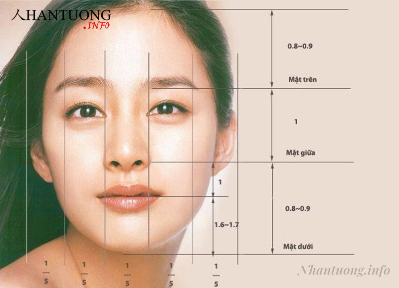 Tỷ lệ chuẩn của khuôn mặt trái xoan