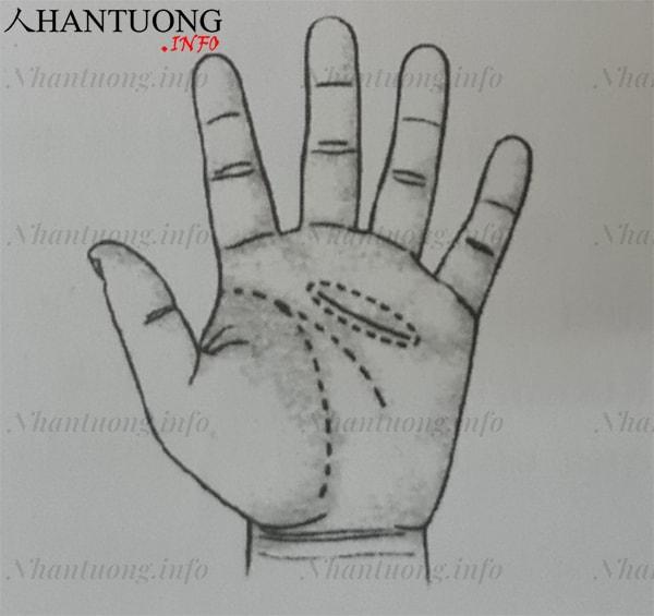 Đường tình cảm lửng giữa lòng bàn tay